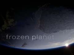 BBC Frozen Planet (Tập 1)